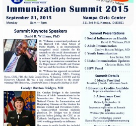 Summit Flyer (5) 2015